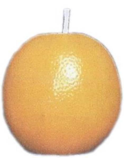 Καλούπι πορτοκάλι