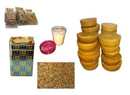 Bild für Kategorie Bienenprodukte