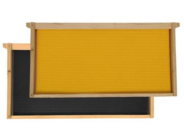 Κηρήθρα Πλαστική ANEL PP Εμβρυοθαλάμου 420*212mm Ακέρωτο Ενσωματωμένη σε Πλαίσιο Ξύλινο
