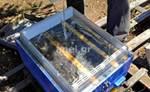 Τροφοδότης Οροφής Πλήρης κάλυψης Διάφανος 7,5 kg Lng Dnt ANEL